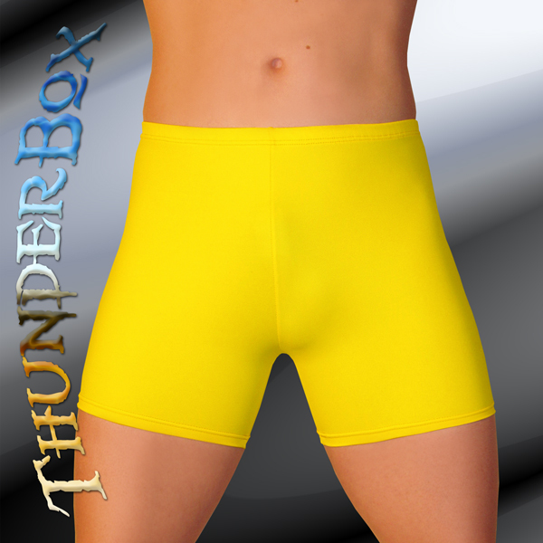 ThunderBox Nylon Spandex Choose COLOR & SIZE Titan Shorts! S, M, L, XL