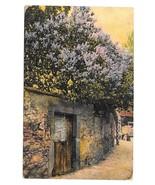 Gate in Stone Wall R. N. Da Nr 3016 Made in Germany Vintage 1909 Postcard - $3.99
