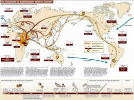 Vinteja charts of - Migration of Modern Humans - A3 Poster Print - $22.99