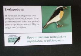 Birdlife Cyprus-Cyprus wheatear small pin - $2.20