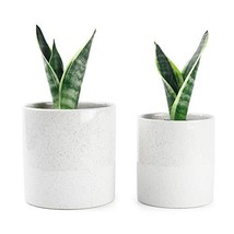 Greenaholics Plant Pots - 5.9 + 5.1 Inch Ceramic Planters for Snake Plan... - $20.53