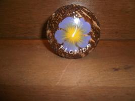 Florida Souvenir Shell Change Purse - $3.00