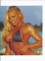 Trish Stratus 8x10 Unsigned Photo Wrestling WWE WWF WCW AWA TNA ECW DIVA - $9.50