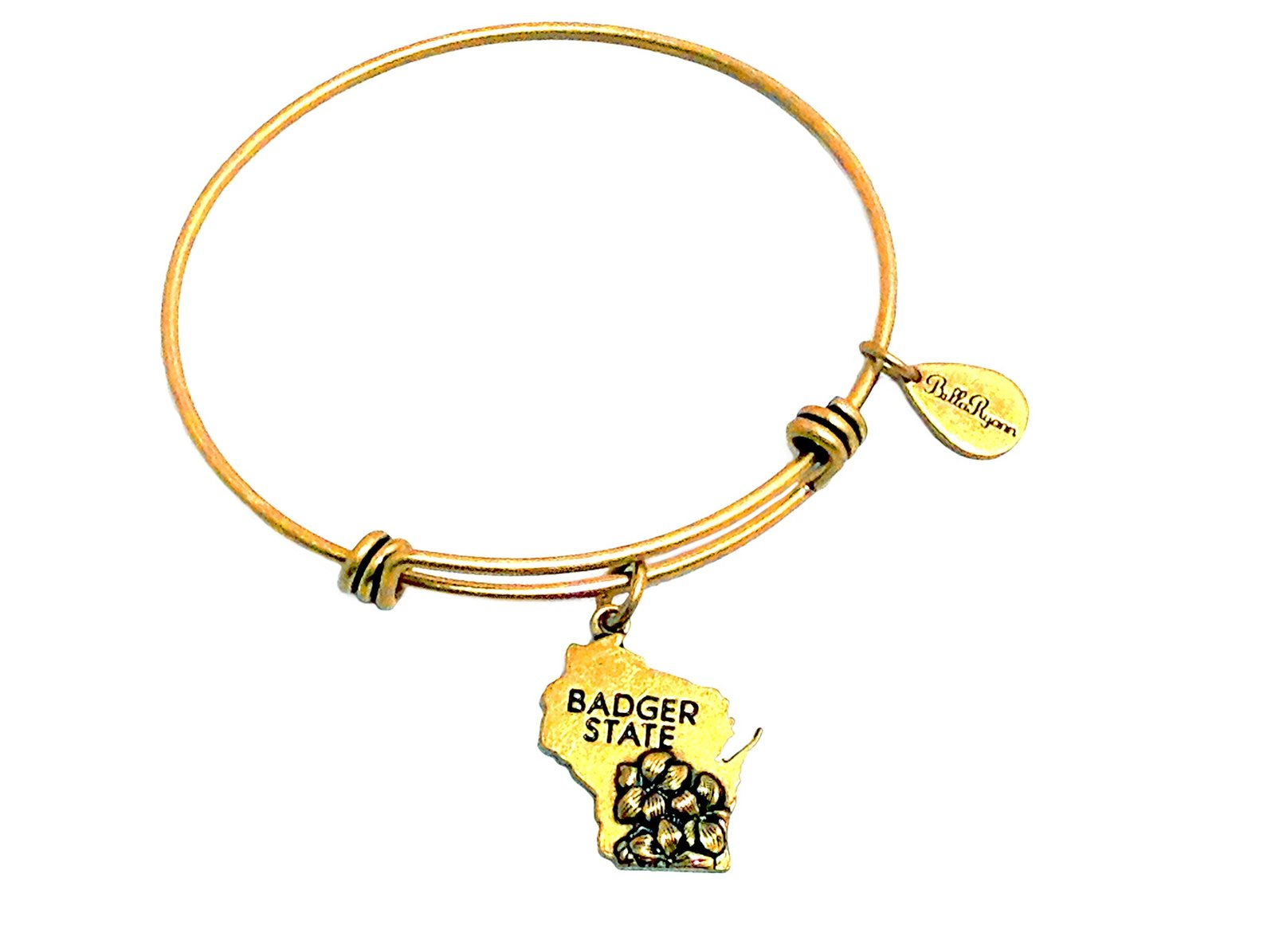 State of Wisconsin Charm Bangle Bracelet