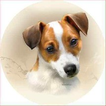 Jack Russell Terrier Accent Magnet - $9.95