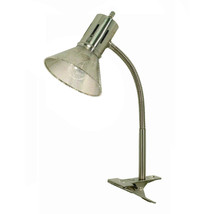 Clip-on Gooseneck Desk Lamp Brushed Nickel - $17.99