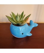 """Ceramic Whale Planter with Succulent, live plant, 4"""" blue animal pot, Ec... - £12.31 GBP"""