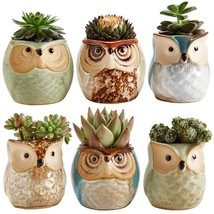 Sun-E 2.5 Inch Owl Pot Ceramic Flowing Glaze Base Serial Set Succulent P... - €16,44 EUR