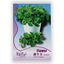 Sweet Oregano Seed Best Garden Plants Vegetable... - $4.99