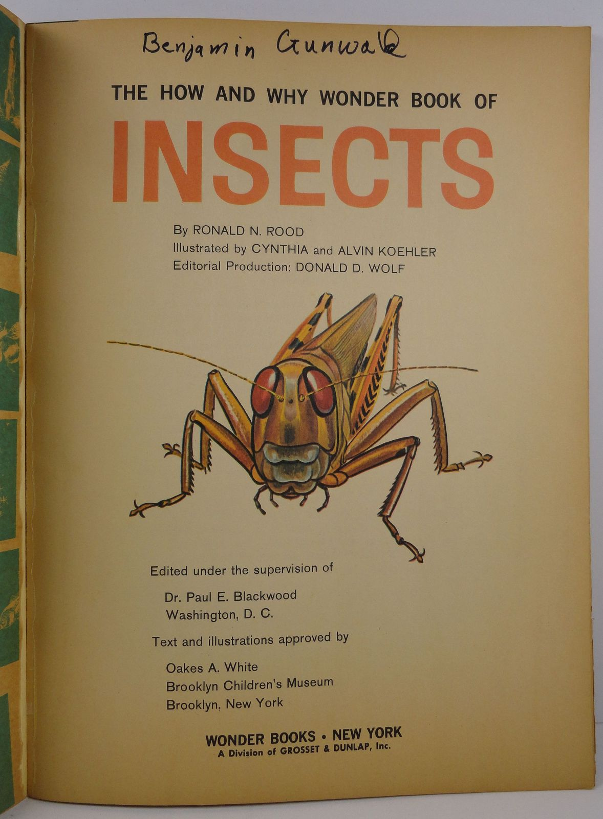The How and Why Wonder Book of Insects Ronald N. Rood 1960
