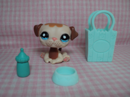 Discontinued Rare LPS Littlest Pet Shop Cute Pug Puppy Dog W/Accessories - $49.98