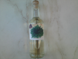Rose Of Jericho Water. For cleansings, house blessings, and spell reversals  - $14.00