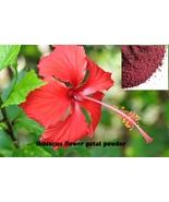 Hibiscus flower anatomy upload thumbtall
