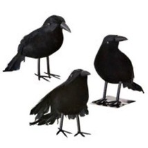 Halloween Black Feathered Small Raven Crows - 6 Pc Set Decor Props - $18.51