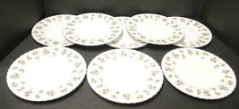 Eight Royal Albert Winsome Bread & Butter Plates * White Background - $28.49