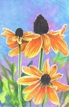 "Akimova: DAISIES, colored pencils, flower, green, 6.75 ""x10"", garden - $12.00"