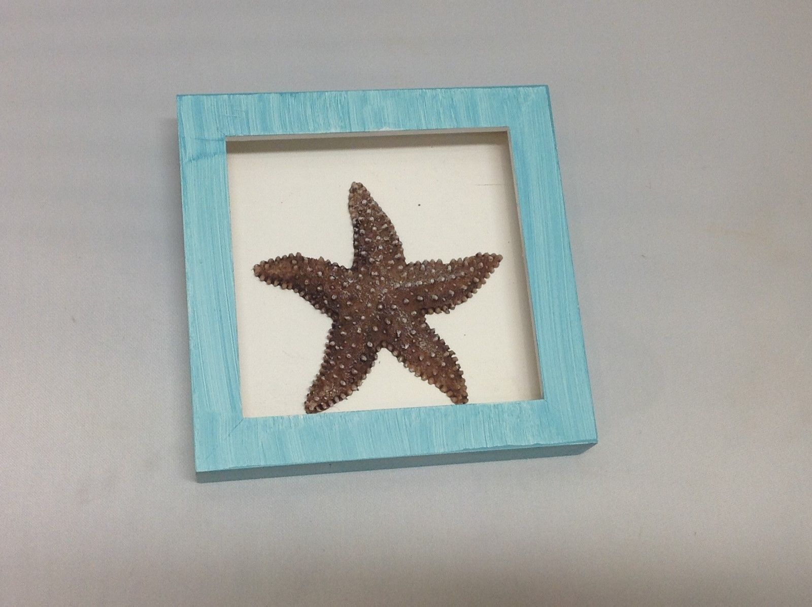 NEW Blue w Dark Brown Resin Starfish Shadow Box