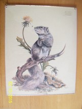 Vintage Gray Squirrel  h moeller art print 8 x 10 - $9.89