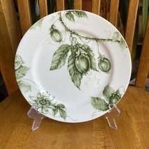 "William Sonoma Ormonde Green Fruit Salad Plate 9"" Replacement - $24.75"