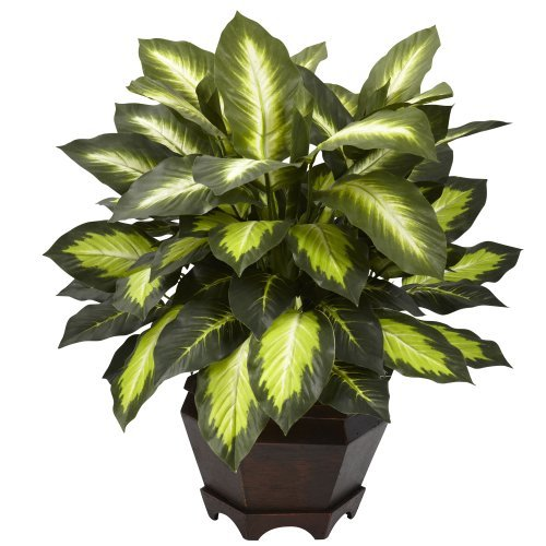 Nearly Natural 6720 Triple Golden Dieffenbachia Plant with Wood Vase, Green