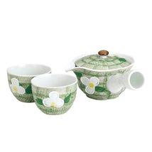 Tokyo Matcha Selection - Minoyaki Pottery Tea Set : Green Floral - 1 Teapot &... - $51.48