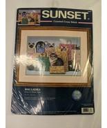 Sunset Counted Cross Stitch Kit 13662 Cat Bag Lady - $24.95