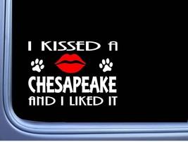 "Chesapeake Bay Retriever Kissed L932 8"" dog window decal sticker - $4.99"