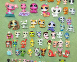 LITTLEST PET SHOP LOT OF 350+ ACCESSORIES 81 PETS INCLUDING TEENSIES & MORE LPS - £169.06 GBP