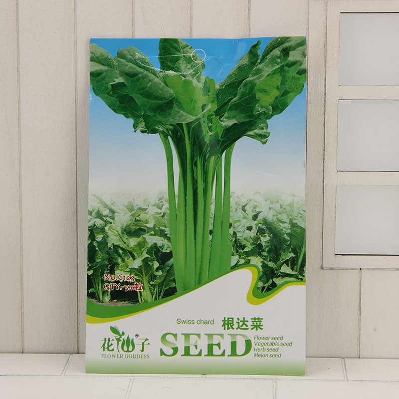Primary image for Swiss Chard Seed Mature Flowering 40 Days - 50 Seeds/pack