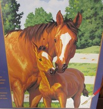 Dimensions Paintworks Paint By Number Kit Horse... - $17.98