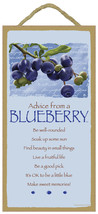 "5"" X 10"" ADVICE FROM A BLUEBERRY WOOD PLAQUE Inspirational Sign Novelty ... - €9,90 EUR"