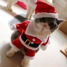 Christmas Santa Costume - $19.00