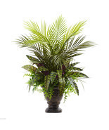 "27"" Mixed Areca Palm, Fern & Peacock w/Planter 6828 - $68.98"