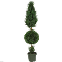 nearly natural 5' Cypress Ball and Cone Silk Tree In-door/Out-door - $184.99