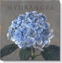 """Darren Gygi Hydrangea Painting 9"""" X 9"""" Canvas G... - $27.99"""