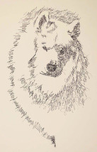 SAMOYED DOG ART PORTRAIT PRINT #78 Stephen Klin... - $49.45