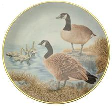 Danbury Mint water bird plate from the Sumner Collection - Canada Goose - CP803 - $35.67