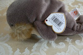 """TY Original Beanie Babies Walrus """"Jolly """" Retired In Mint Condition 1996... - $494.99"""