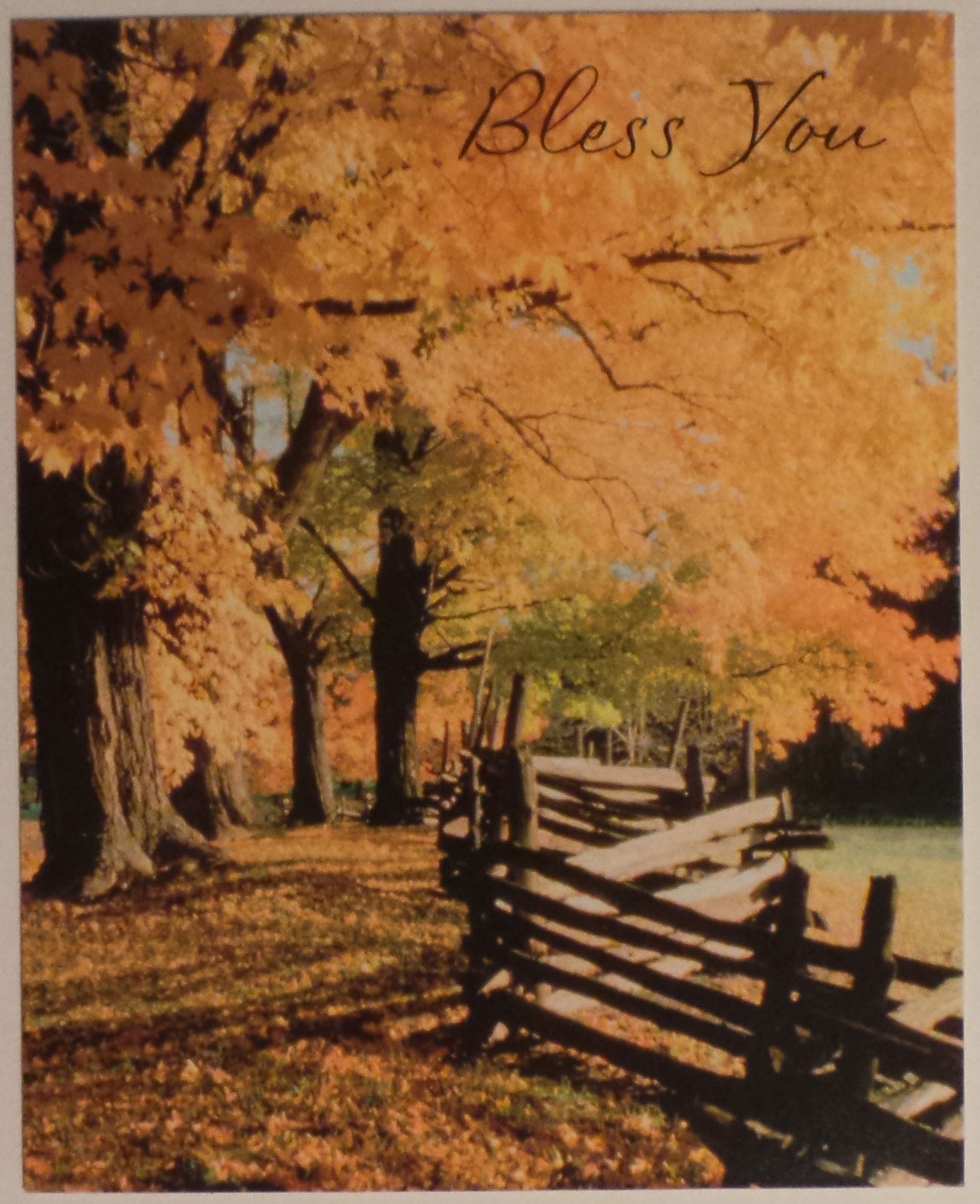 "Greeting Card Thanksgiving ""Bless You"""