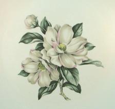 Laughlin Double Magnolia Rhythm Eggshell 8 1/4 ... - $14.73