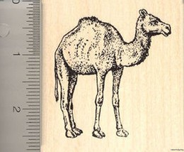 Large Camel rubber stamp Wood Mounted J7105 - $15.95