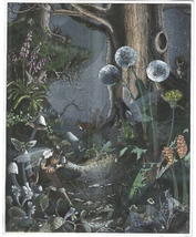 First Meeting Fairies Ron Jean Henry Collectible Vintage 6X8 Foil Fantas... - €3,38 EUR