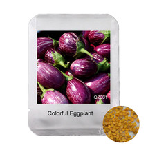 Professional Packaging 100PCS Colorful Eggplant seeds, Natural green veg... - $8.03