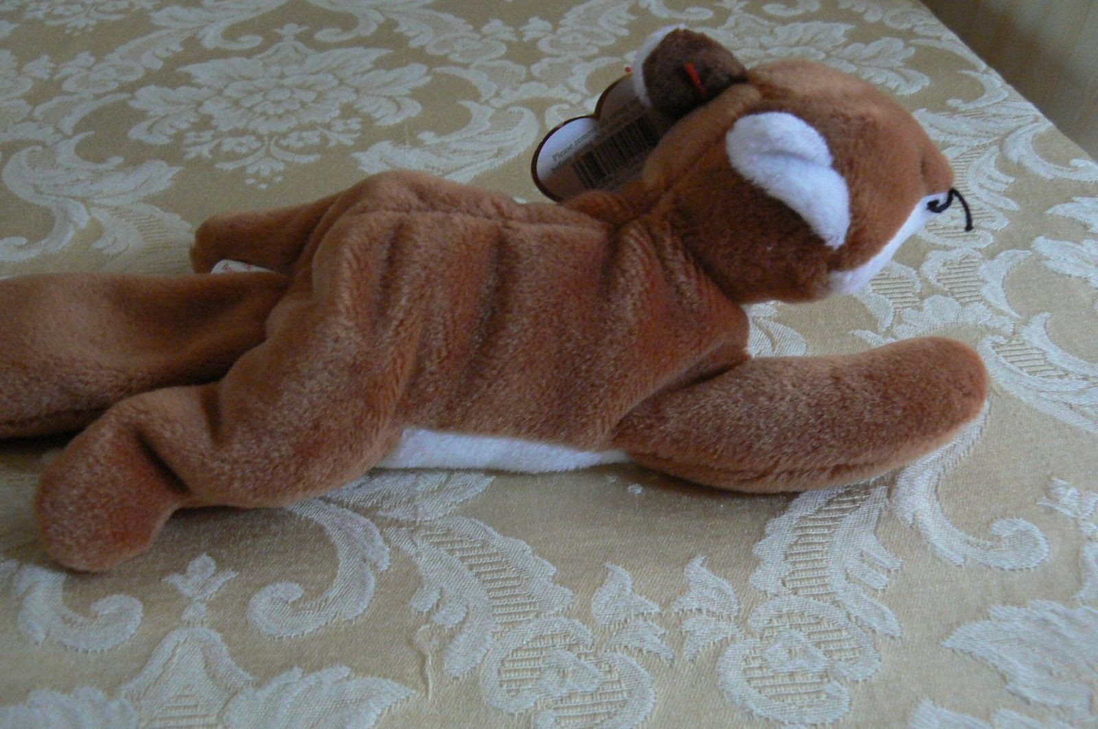 "Rare Ty Original Beanie Babies "" Sly "" The Fox - Retired Errors Mint Condition image 4"