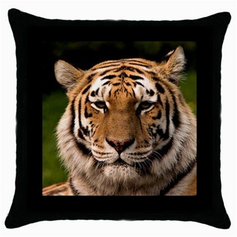 Throw Pillow Case Decorative Cushion Cover Asian Tiger Gift model 30399416