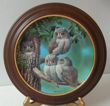 PEEK-A-WHOO SCREECH OWLS by Joe Thornbrugh COLLECTOR PLATE & FRAME Baby ... - $21.82