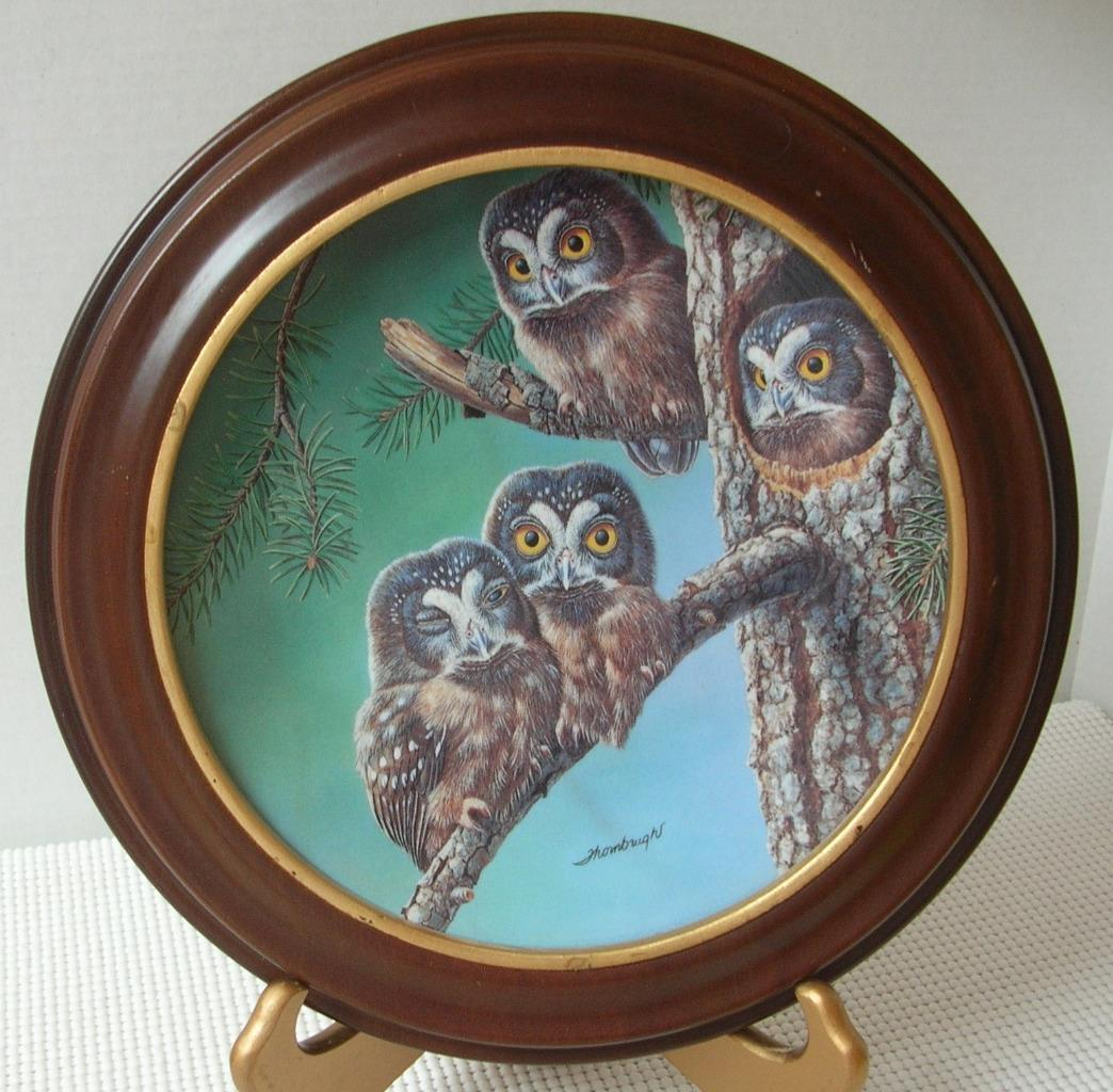 BEGINNING TO EXPLORE: BOREAL OWLS by Joe Thornbrugh COLLECTOR PLATE & FRAME Baby
