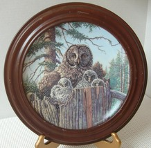 FOREST'S EDGE: GREAT GRAY OWLS by Jim Beaudoin COLLECTOR PLATE & FRAME M... - $21.82