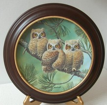THREE OF A KIND: GREAT HORNED OWLS Joe Thornbrugh COLLECTOR PLATE & FRAM... - $21.82