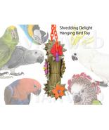 Shredding Delight Hanging Bird Toy - $19.50